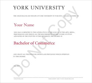 Picture of Bachelor of Commerce graduation from BAS